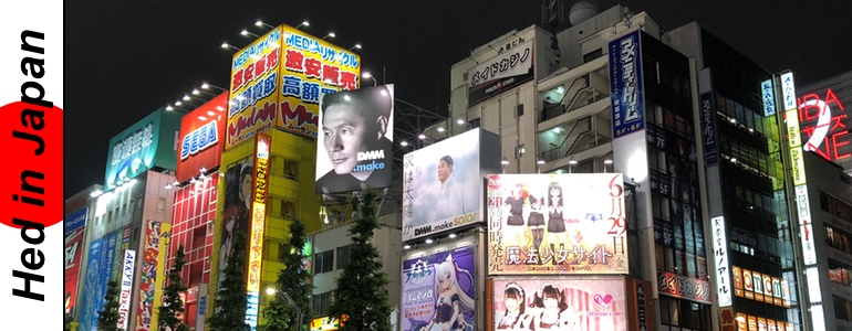 Hed's In Japan - Akihabara